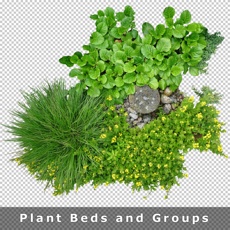 8 cutout plant beds groups